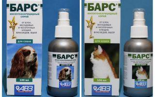 Spray Bar dari kutu untuk kucing dan anjing