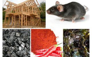 Perlindungan rumah bingkai terhadap tikus