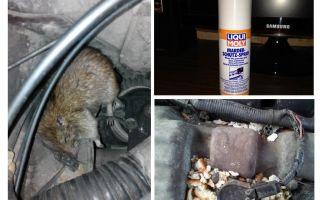 Tikus semburan untuk kereta
