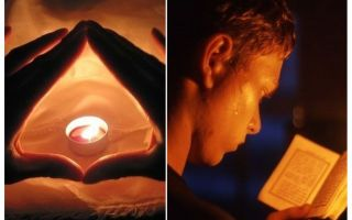 Plot dan doa dari bedbugs di apartmen