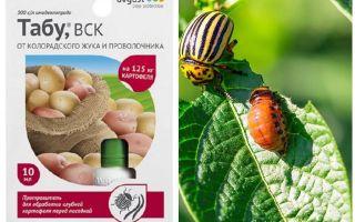 Ubat penawar untuk kumbang kentang Colorado