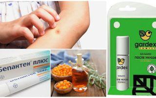 Kedai dan ubat-ubatan rakyat untuk gigitan nyamuk dan blackflies