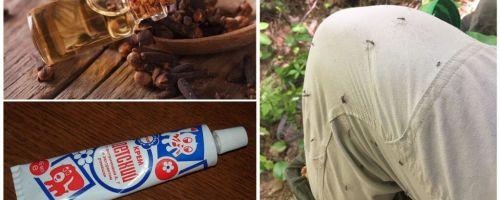 Pemulihan rakyat untuk nyamuk
