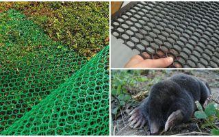 Mole Nets