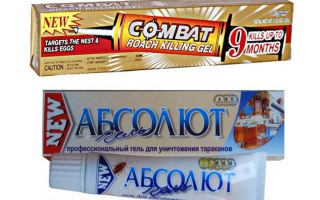 Best gel untuk bedbugs: Global, Absolute, Fipronil, dan lain-lain