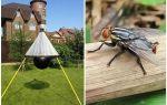 Perangkap buatan sendiri untuk gadfly dan gadfly