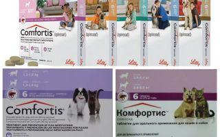 Tablet kutu untuk anjing dan kucing