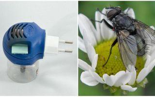 Fumigators dari lalat dan nyamuk di outlet