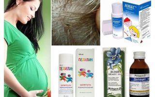Bagaimana untuk merawat pediculosis semasa mengandung dan menyusu