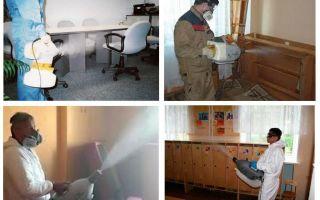Rawatan kabus panas untuk bedbugs