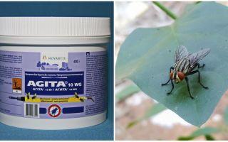Penggunaan Agita dari lalat
