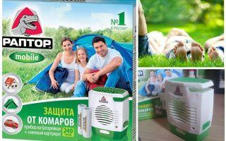 Raptor pada bateri nyamuk