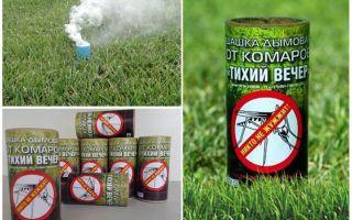 Pemeriksa asap yang terbaik untuk nyamuk