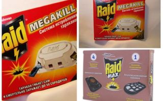 Serangan Panic: perangkap, semburan, aerosol