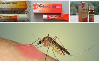 Gel Fenistil dari gigitan nyamuk: arahan, ulasan dan analog
