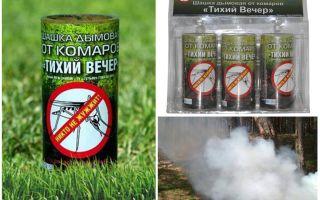 Bom asap Malam nyamuk yang tenang