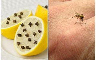 Lemon dengan ulas nyamuk untuk kanak-kanak dan orang dewasa