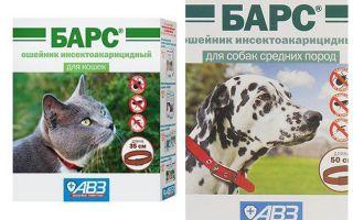 Leopard Collar dari kutu untuk kucing dan anjing