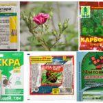 Bahan kimia toksik untuk perlindungan tumbuhan
