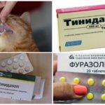 Tablet untuk giardiasis